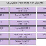 généalogie OLLIVIER